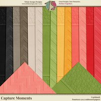 Capture Moments Digital Scrapbooking Cardstock