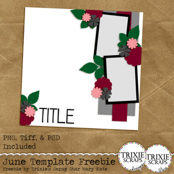 ts_june2015_template