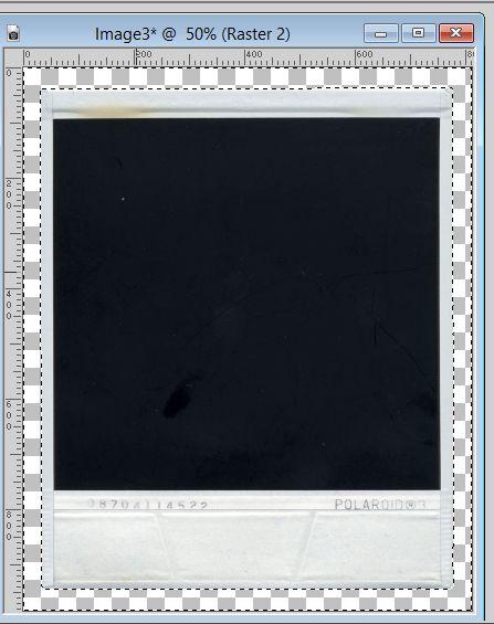 Polaroid Tutorial Image 5