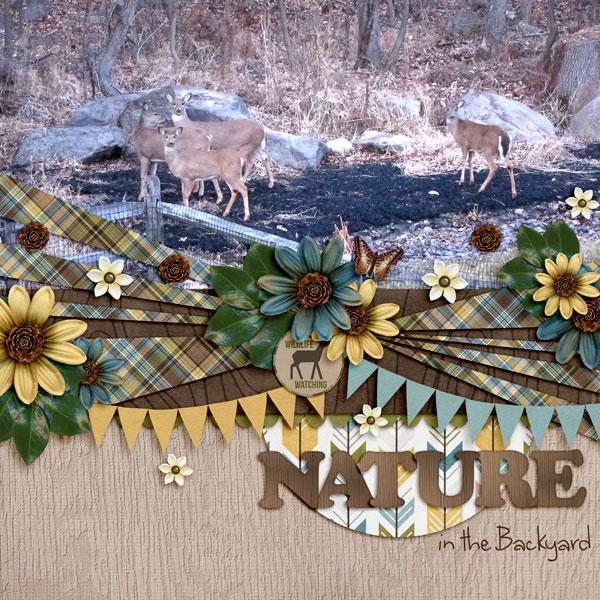 NatureBoy_oct14temp