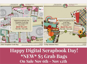 DSD Grab Bags from Trixie Scraps