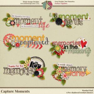 Capture Moments Wordart