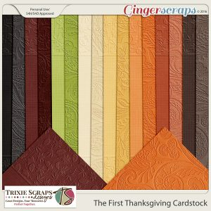 The First Thanksgiving Cardstock