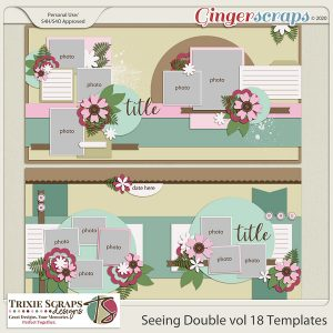 Seeing Double vol 18 template pack